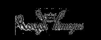 Markenporzellan von Royal Limoges